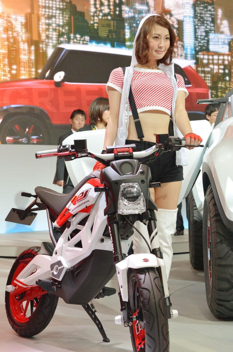 Tokyo Motor Show 2013 22